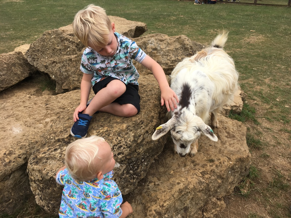 Petting the goats at Cotswold Wildlife Park